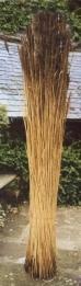 Water Reed Bundles